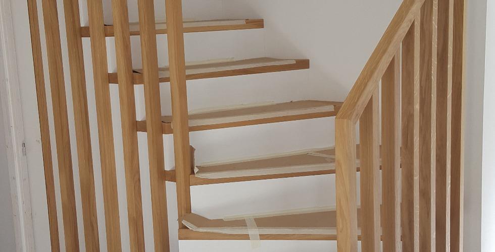 Linea claustra